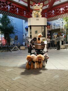 大須商店街にて