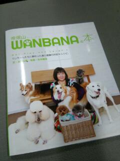 WANBANA の本