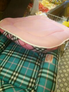 夏用のベッド入荷
